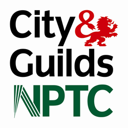 Bristol Tree Services City & Guilds Qualification